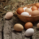 Eggs and By-Products