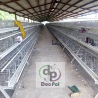 Poultry Cages for sale