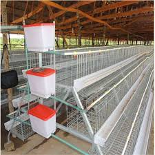 poultry-equipment